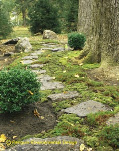 We designed this path. Moss ground makes me feel calm.